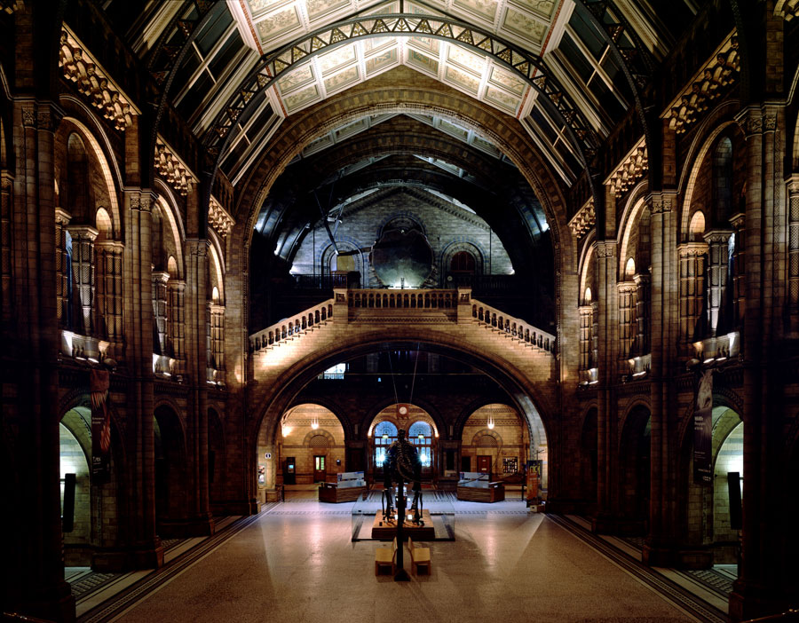Foyer Museum Hours : The guardian s science uncovered camila ruz